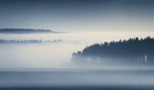 Sheets Of Mist by JoniNiemela