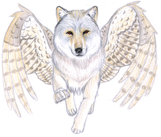 Winged Wolf by Kimaria