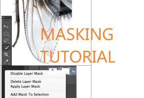 Quick Mask and Masking Tool Tutorial by PDCMS