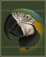 Macaw Painting by Chaotica-I