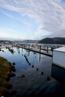 The Docks in Florence, OR by Phaze0352
