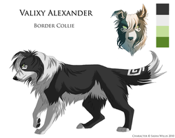 Valixy - Character Sheet by Sashra