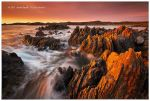 Tarkine Coast by Dee-T