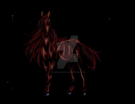 Horse [ Black Paper ] by mbormke