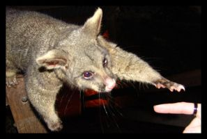lets hold hands by yepyepyep
