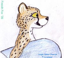 Single Speed Cheetah by FinnishFox