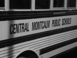 Central Montcalm by EquideDesigns
