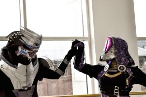 Garrus and Tali Preview by Dynneekx