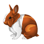 [CLOSED] 24 Hour Rabbit Auction by Gingerpatch-59