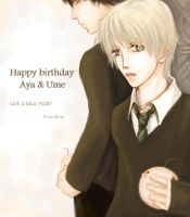 Harry+Draco HBD for Aya+Ume by rosita