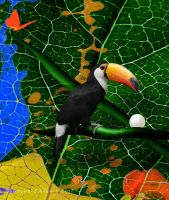 Toucan Camouflage by AVAdesign