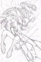 veno_vs_spidey_pinup...pencil by fco