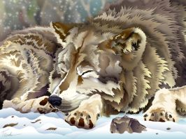 Contented Wolf by trey-x