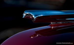 Chrome Silhouette by Swanee3