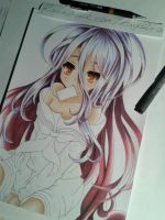 Wip: Shiro ([ No Game No Life ]) by Rayckro