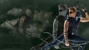 Hawkeye wp3 - You know my name by ViraMors