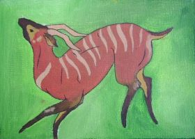 A Bongo is a Jungle Kudu by insomniacs-nightmare