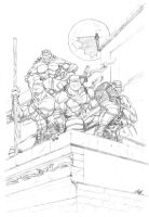 Mutant Ninja Turtles by Zatch