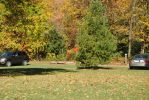2013-10-06 Greenville Lions Park by charliemarlowe