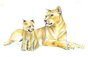 lion cub and mother by mikanrock