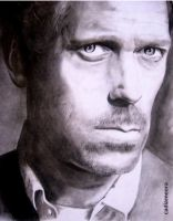 Dr House - Hugh Laurie by cadiameora