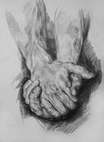 Hands Study by HisHalfElf
