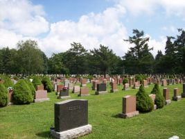 Greenwood Cemetary 2 by tune4jack