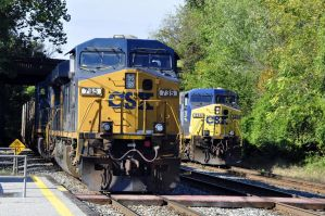 U813-12 and Y139-15 by jhg162