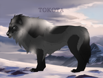 Storm 24252 by TotemSpirit