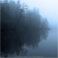 Misty Trees by Val-Faustino