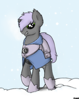 A Sentinel in the Cold by Sinrar