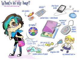 .what's in my bag meme. by akimaro