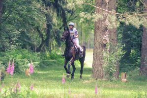 3DE Cross Country Racetrack Vintage Coloration by LuDa-Stock