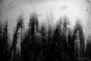 Ashes against the grain II by Sarah--G