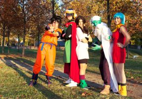 Dragon Ball Cosplay Group by Tanpopo89