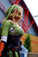 Little Lion Cosplay - Lady Link 3 by Mr-PKSnapSnap4078