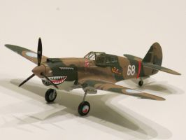 Curtiss Hawk H81-A2 P-8109 by kanyiko
