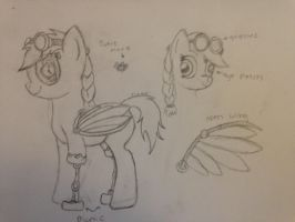 Commision : Design a new Steampunk Pony by MLP-Gear