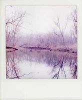 polaroid river by kuru93