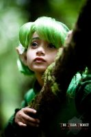 The Zelda Project: Saria by Adella