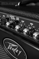 Peavey Envoy by rememberthename
