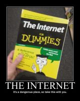 Internet for Dummies by X2010