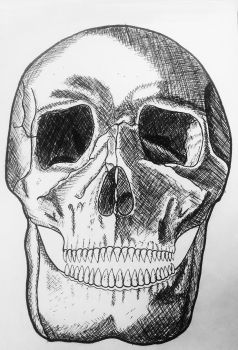 skull by itzthedave