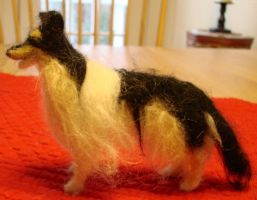 Wool collie, tricolor by Lupineleigh