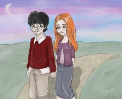Harry and Ginny by casie