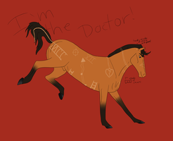 I'm the last Time Lord But I go by The Doctor by IceWolfStables