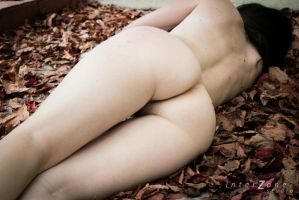 Autumn leaves 02 by Zone-studio