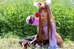 My passion~ by Natsumi-angel