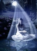 Veil n Pearls by Laxmi-Arts