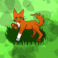 Squirrelflight by Emaperatriz